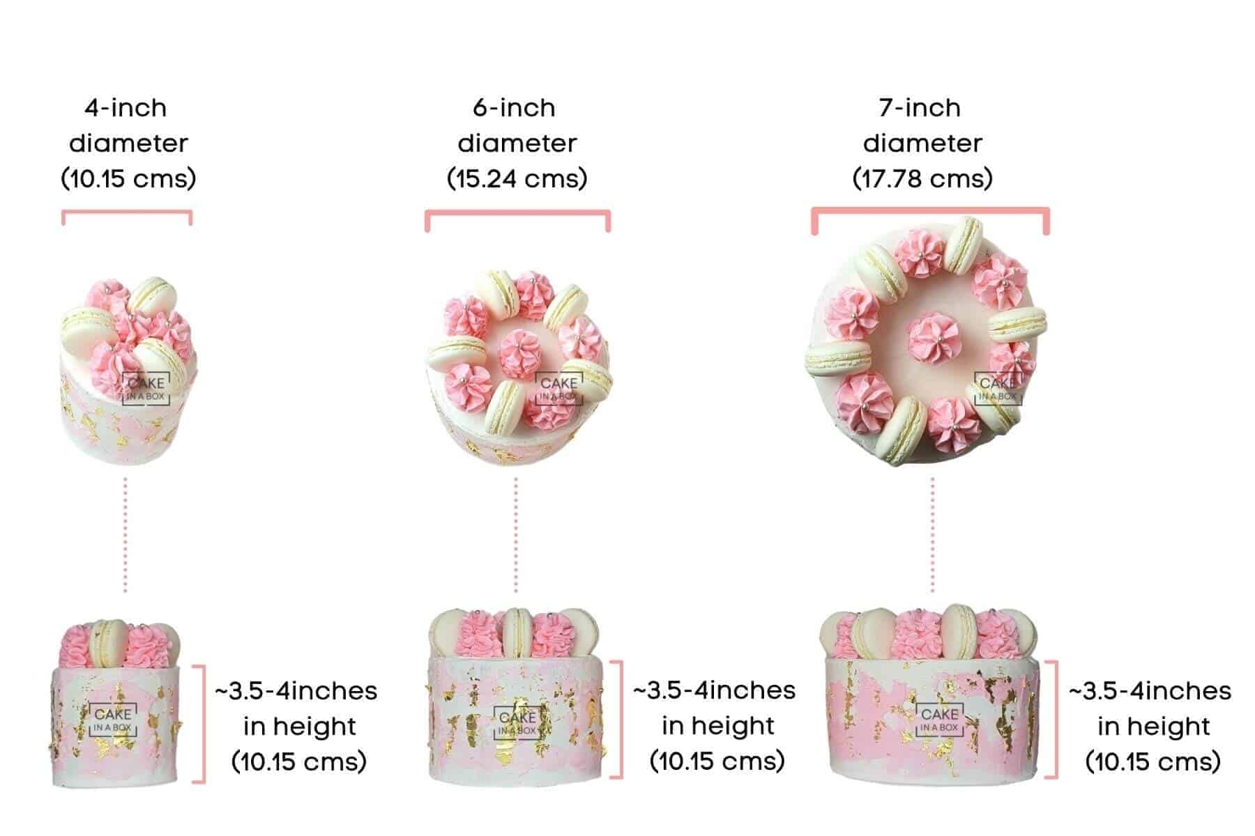 Cake In A Box Size Information